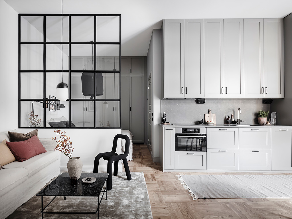 Smart Studio With A Glass Partition Coco Lapine